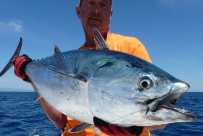 pesca del atun tuna encd 7