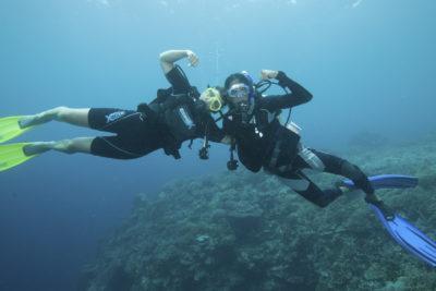 encd cursos formativos diving 1