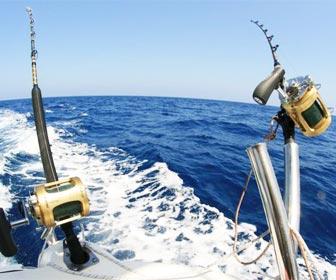 Pesca Curricà d'Altura